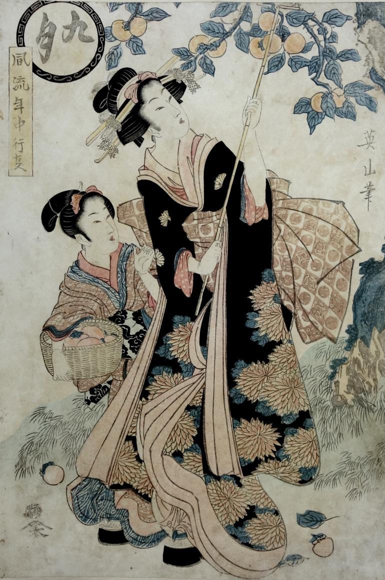 EIZAN Kikukawa