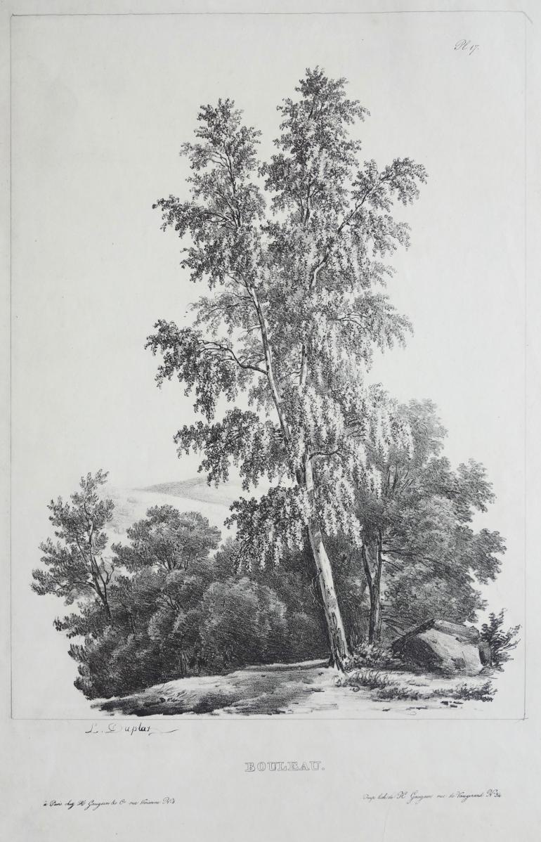 DUPLAD Pierre Louis
