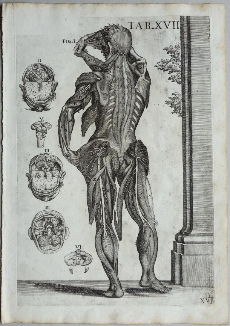 CORTONE Pierre de (d\'après)