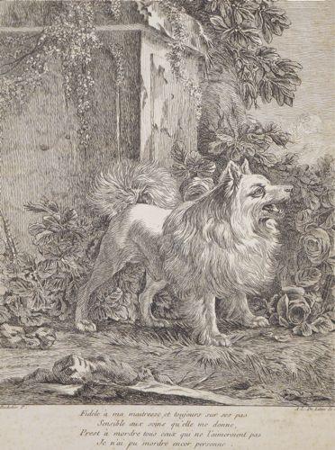 LALIVE DE JULLY, marquis de REMOVILLE (Ange Laurent de)