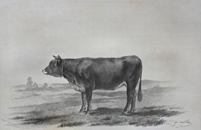 VALENTIN Henri