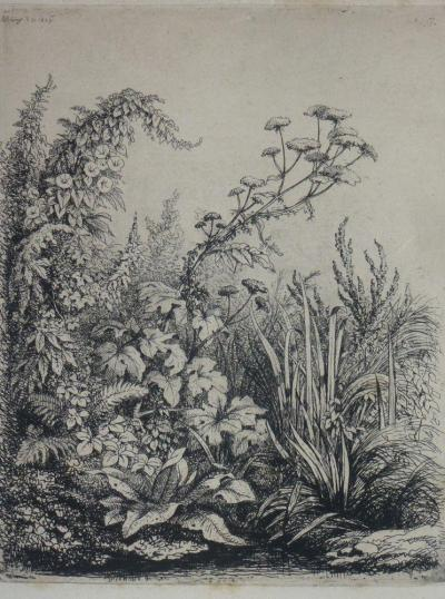 BLERY Eugène