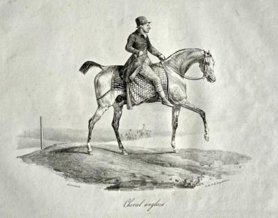 GERICAULT Théodore
