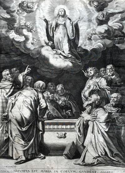 BLOEMAERT Cornelis